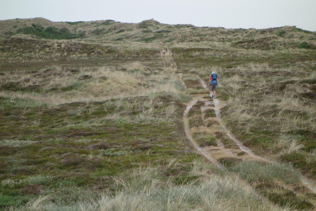 n Dänemark - Westküstemweg